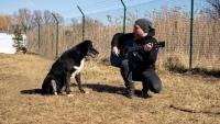 Двамата ВАСКОВЦИ от ODD CREW в благотворително шоу за кучета - ДНЕС