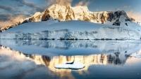 ДНЕС полъх от Антарктида в 'ПРИШЪЛЕЦЪТ 2112' на ВАСКО РАЙКОВ от 16:00